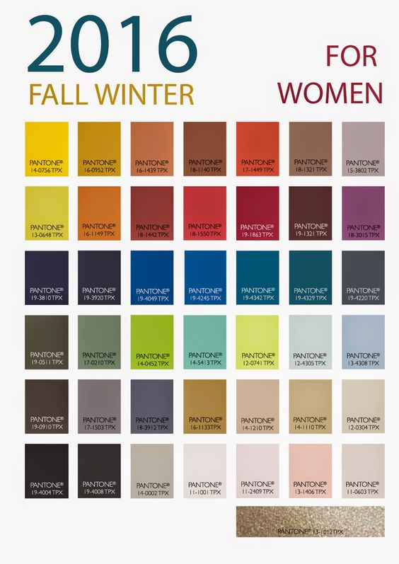Patone 39 S Winter 2016 Women 39 S Color Forecast From Store
