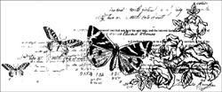 CS795 Kaisercraft Timeless Clear Stamp - Botanical: