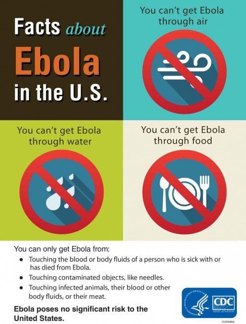EbolaInfographic_jpg 5 Things You Need to Know About the #Ebola #Virus