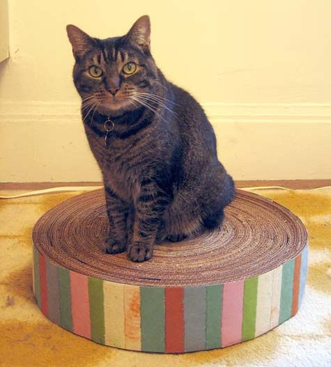 Kitty Cardboard scratcher  http://www.designsponge.com/2009/01/diy-project-recycled-cardboard-kitty-pad.html
