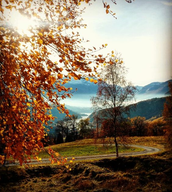 Autumn in Valdres, Norway