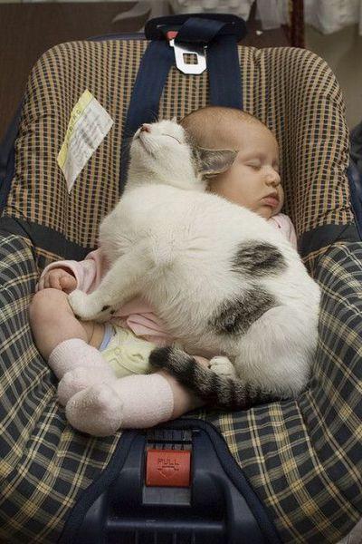 Shhhh babies sleeping