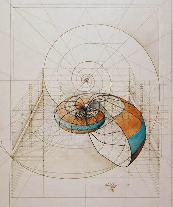 desenho geometrico materiais esuqdro regura compasso transferidor - Pesquisa Google