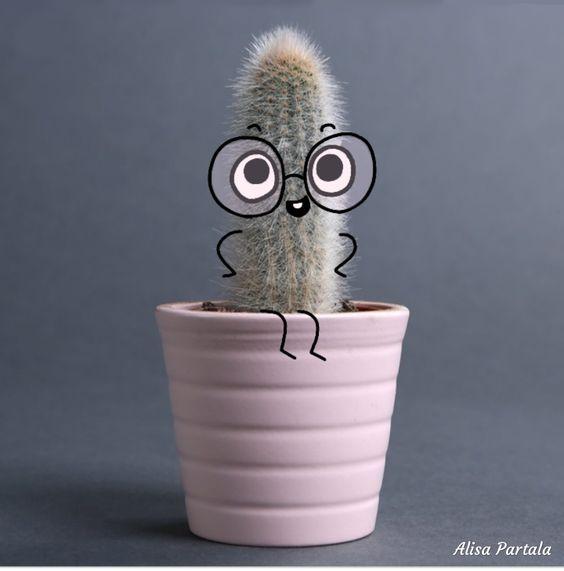 #ArtAlisaPartala #humor #fanny #smartcactus #fannycactus #cactus