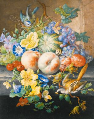 HERMAN HENSTENBURGH  HOORN 1667 - 1726  STILL LIFE OF FLOWERS AND FRUITS, WITH TWO BIRDS  Estimate: 30,000 - 40,000 USD   Watercolor and gouache, heightened with white and with gum arabic, within black ink framing lines, on vellum;  signed in ochre, lower right: H: Henstenburg: fec.  375 by 302 mm; 14 3/4 by 11 7/8 in