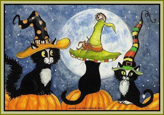 foto   Peintures & Illustrations de chats: