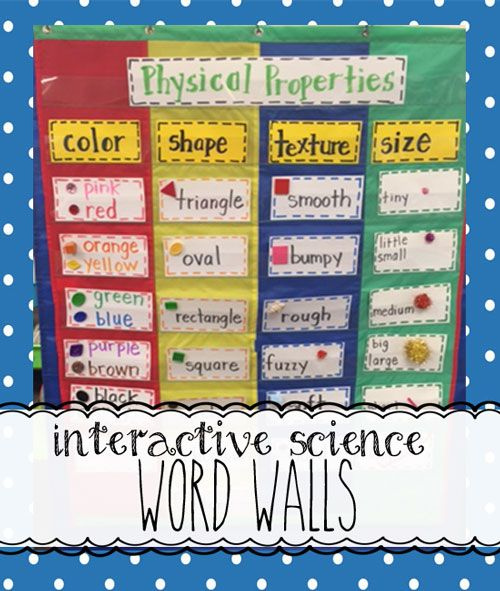 Interactive Science Word Walls