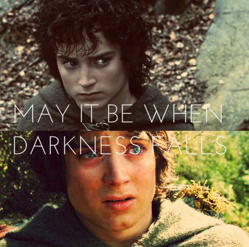 ..You have a Samwise Gamgee