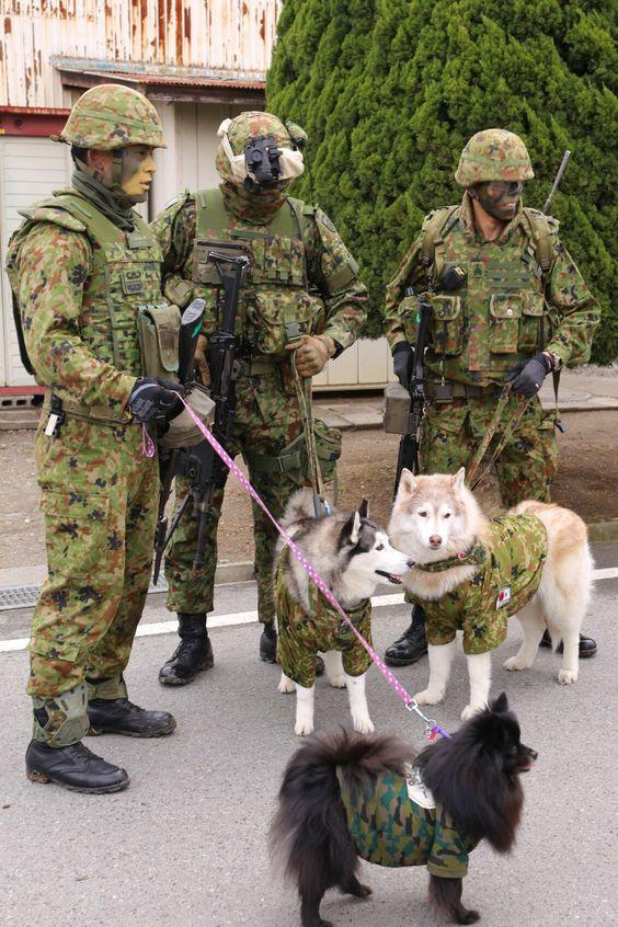 犬を連れている隊員