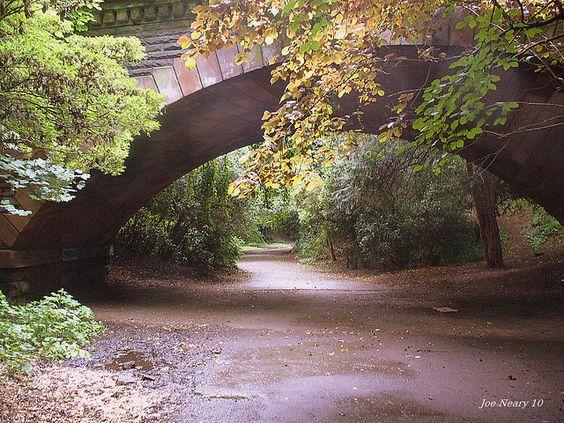 liverpool park |