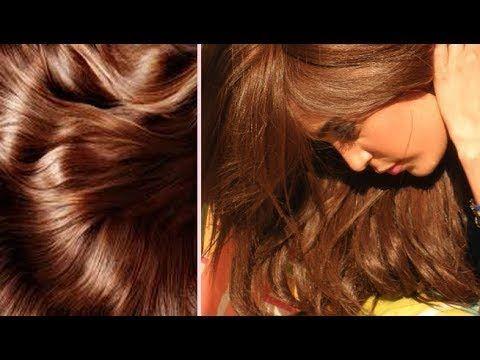 سيحسدك الجميع على لون شعرك صبغة بلون بني شكولاطة بالبيت بمكونات بسيطة وتغطي كامل الشيب Youtube Hair Styles Long Hair Styles Hair