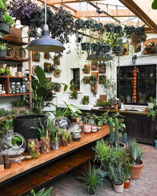 P I N T E R E S T Abbbygiiirl Greenhouse Greenhouse Aesthetic Abbbygiiirl Aesthetic Greenhous In 2020 Garden Center Displays Greenhouse Interiors Garden Shelves