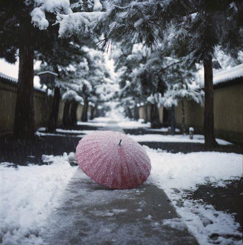 Umbrella by yocca