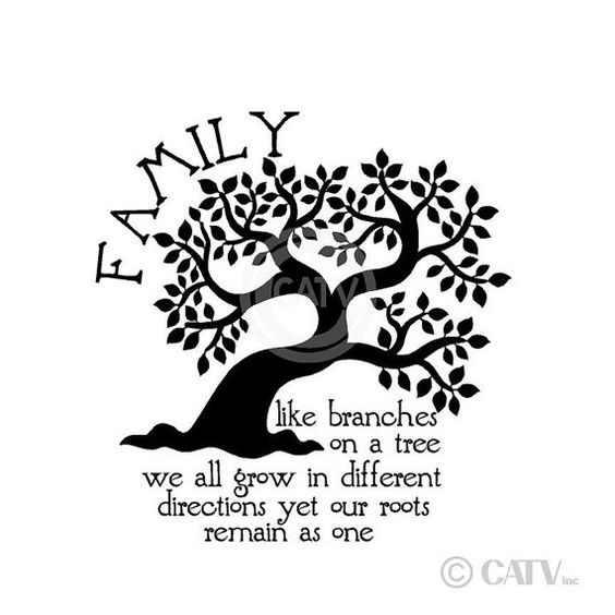 NEW Family Like Branches On A Tree We All Grow by VinylLettering