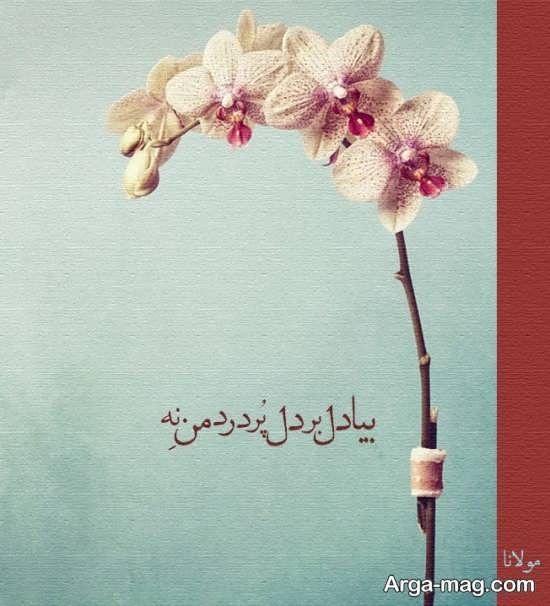 عکس نوشته های مولانا با منتخبی از بهترین اشعار مولانا برای پروفایل Persian Quotes Persian Decor Persian Art Painting