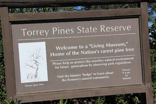 Photos of Torrey Pines State Natural Reserve, San Diego - Attraction Images - TripAdvisor