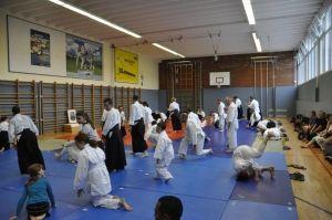 Gemeinsames Aikidotraining der Oberösterreichischen Aikidovereine, Juli 2015, Linz: Trainierende