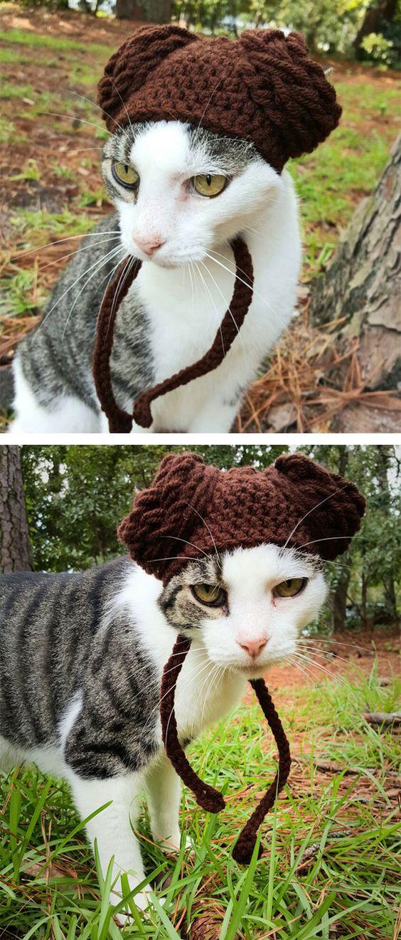 Gorros De Crochê Para Animais. Eles São Perfeitos