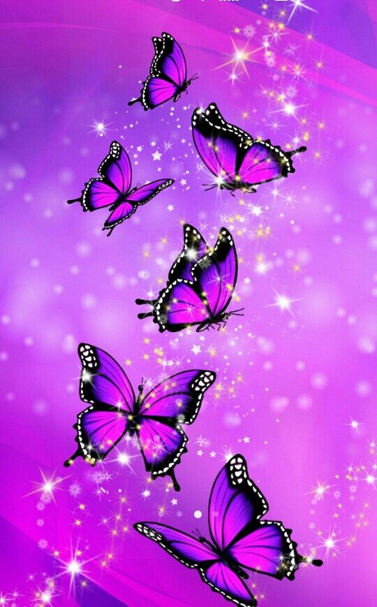 Purple Butterfly Iphone Background