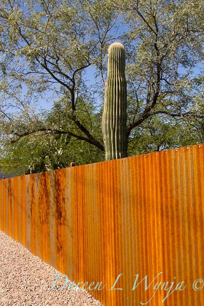 Corrugated Rusty Metal Fencing 5775 The Arizona House
