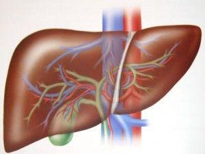 Hepatitis B causes, symptoms and treatment