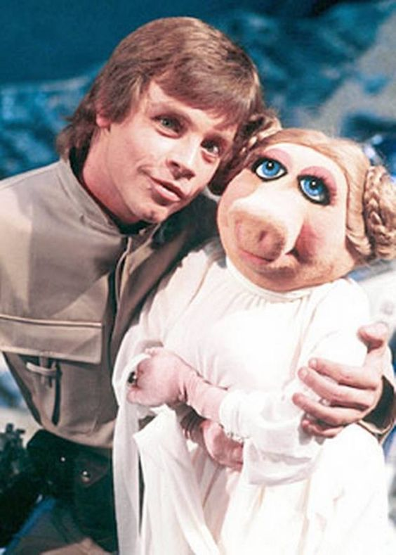 Luke with Ms Piggy. The Stars of Star Wars episode of the Muppet Show.