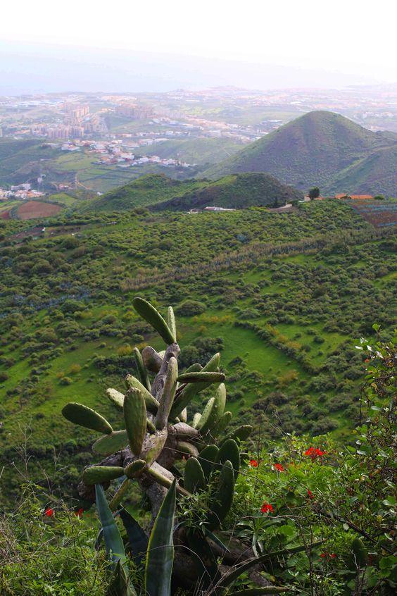 Gran Canaria es una de las islas más bonitas de España sin dudarlo. Exuberante vegetación y preciosas playas. Visita mi blog de viajes para descubrir mis aventuras por Gran Canaria: https://unachicatrotamundos.wordpress.com/2016/07/31/gran-canaria-playas-de-arena-negra-y-vegetacion-variada/