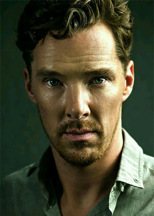 This will forever be my favorite Benedict Cumberbatch picture.