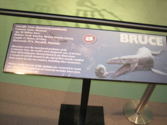 Information on Bruce from the Morden Museum.