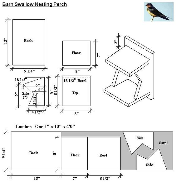 Barn swallow bird house plans diy for wild birds for Northern house plans