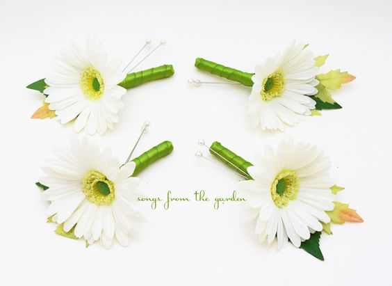 Real Touch Gerber Daisy Boutonniere Groom Groomsmen - White Gerbera Daisy Lime Green Ribbon - Rustic Wedding Boutonniere