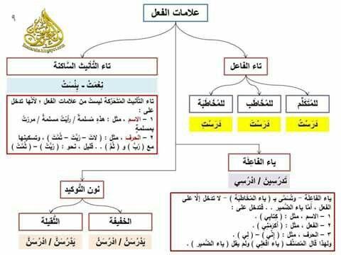 علامات الفعل ص09 Arabic Language Language Learning Arabic