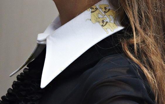 Dog collar! :-)