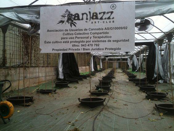 ganjazz2