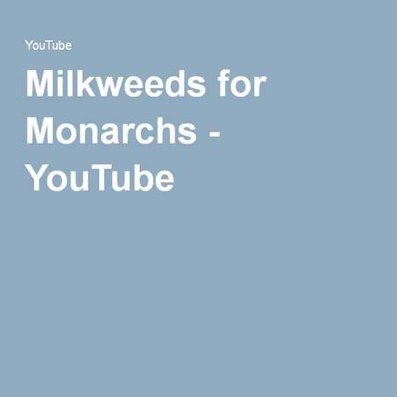 Milkweeds for Monarchs - YouTube