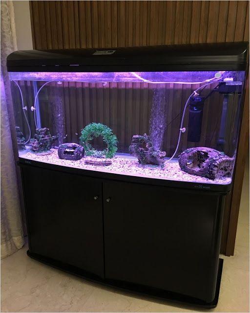 4ft Fish Tank Get The Best Deals On Aquariums Tanks 4 Ft Tank Width When You Shop The Largest Online Selection At In 2020 4ft Fish Tank Fish Tank Design Fish Tank