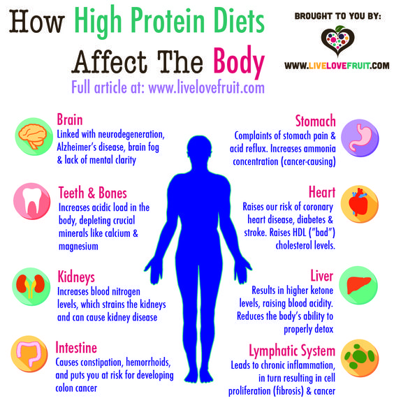 How A High Protein Diet Affects The Body