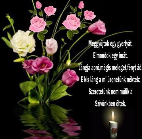Edit Angyalka Kovácsné fényképe.