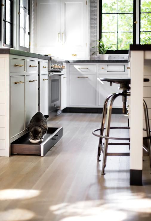 A Black Toe Kick Drawer Accented With An Oil Rubbed Bronze Pull Is Fitted With A Pet Food Bowl And Positione Toe Kick Drawer Black Kitchens New Kitchen Designs