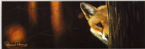 Pollyanna Pickering - Wildlife Art gallery- down in the woods
