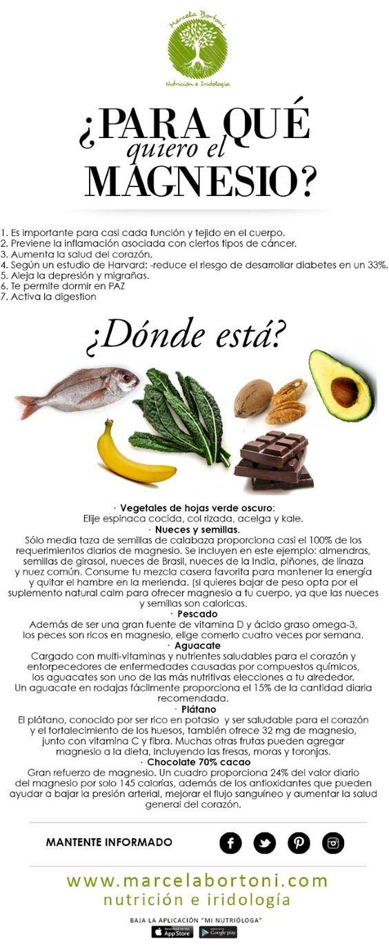 En que alimentos puedes encontrar el Magnesio  https://www.pinterest.com/ninasrangel/salud-para-leer/