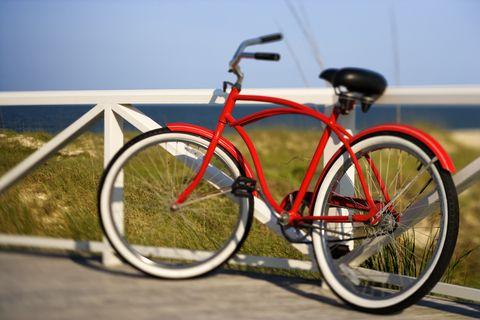 Adult Beach Cruiser Bike Bicycle Rentals In 2020 Beach Cruiser