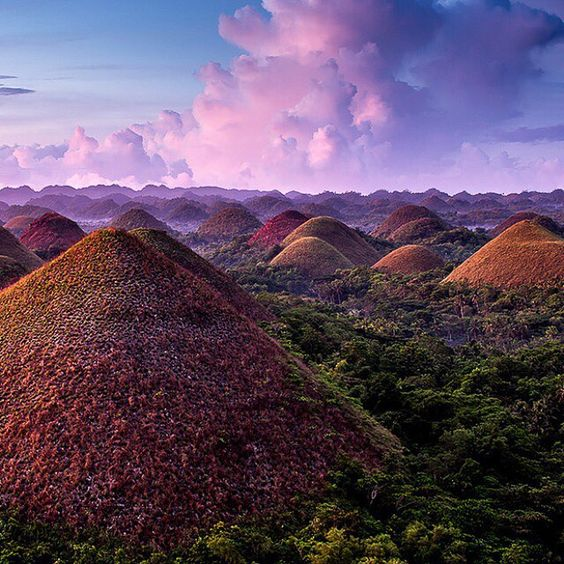 The Chocolate Hills in the Philippines consist of over 1260 grass covered hills that turn a brown chocolaty color in the dry season.  PC: Stefan Forster by tentree