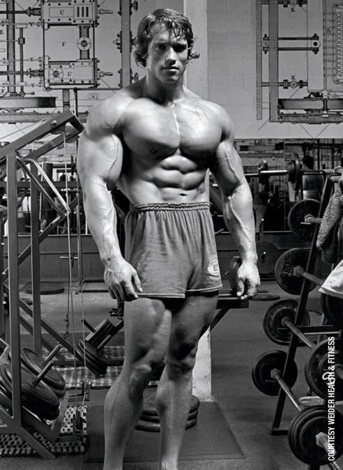 9 Things You Didn't Know About Arnold Schwarzenegger