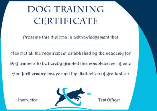 Dog Training Gift Certificate Template Training Certificate