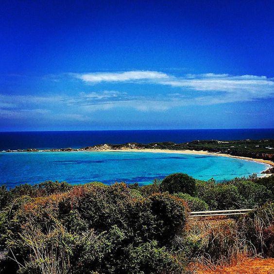 Day 1:  Great Ocean Road:  #greatoceanroad #lorne by zowien http://ift.tt/1IIGiLS