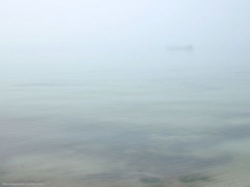 Foggy morning at Smather's Beach, Key West // thisiskeywest.tumblr.com
