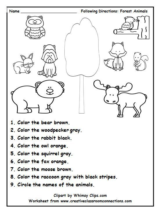 forest <b>animal</b> worksheets <b>animal</b> worksheets preschool forest activities ...