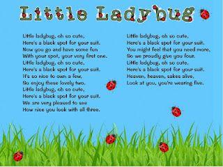 Little Ladybug song | Activities, Lady and Felt
