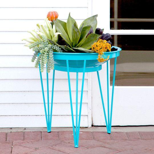 Turquoise patio planter amazingness.